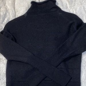 Wilfred Turtle neck from Aritzia